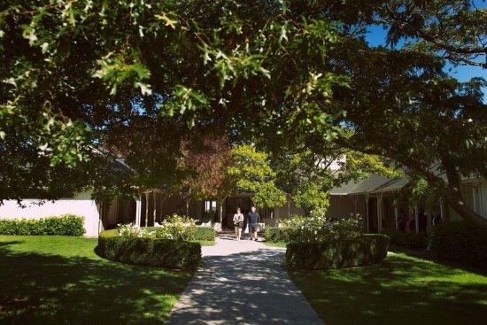 Martinborough, Nowa Zelandia: Palliser Estate Cellar Door