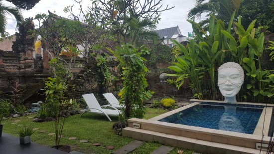 Kerobokan, Indonesia: Gardens and plunge pool