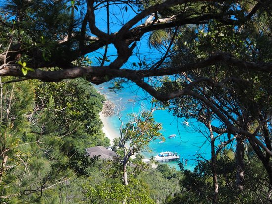 Fitzroy Island, Australia: The resort and jetty