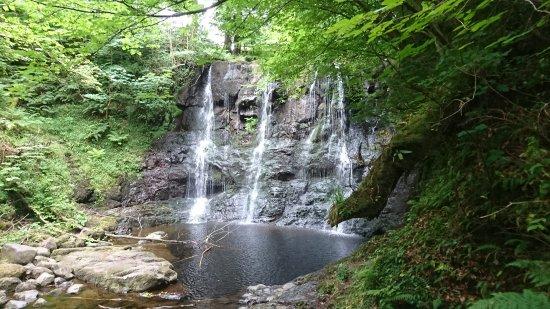 Glenariffe, UK: DSC_0039_large.jpg