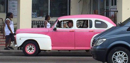 Vintage Cars Tours: muchos autos de variados colores