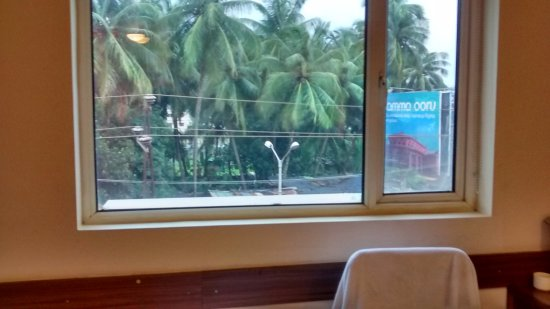 Ginger Hotel Mangalore: Basic window. As you can see if you sit in the
