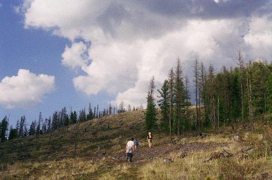 Aktash, روسيا: подъем на гору (недалеко от Улаганского перевала)