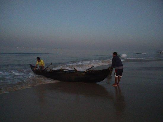 Colva, India: IMG_20161224_063446_large.jpg