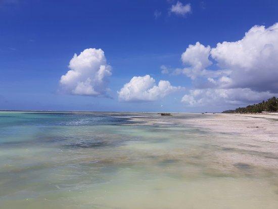 Región de Arusha, Tanzania: Zanzibar, a little heaven.
