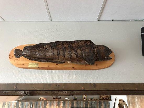 Honningsvag, Noorwegen: King Crab House Brasseri & Bar