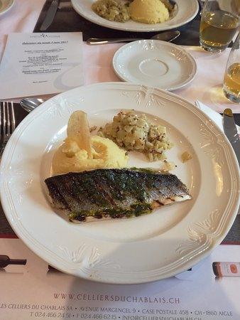 Eurotel Victoria: poisson purée trop bon et fondant