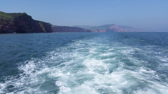 Exmouth, UK: from back of boat.