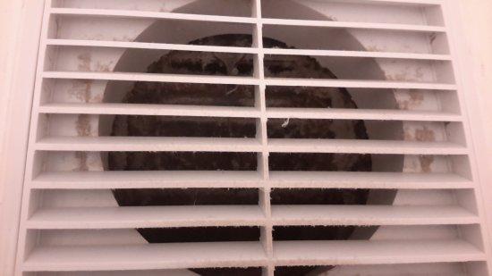 Korora, Australia: Behind the vent degusting