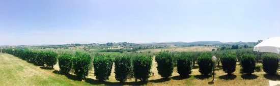 Acquaviva di Montepulciano, Italien: photo3.jpg