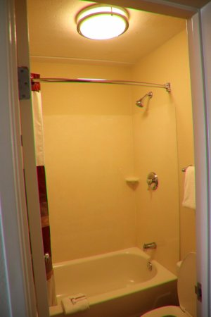 Red Roof Inn Syracuse: The Shower