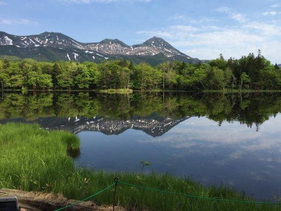 Discover Hokkaido Tours By Markone Style