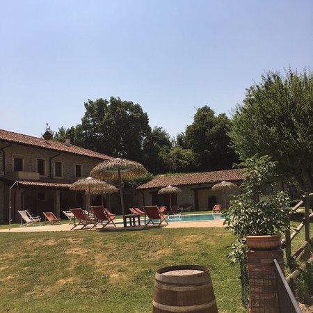 Canelli, Italy: IMG-20170622-WA0021_large.jpg