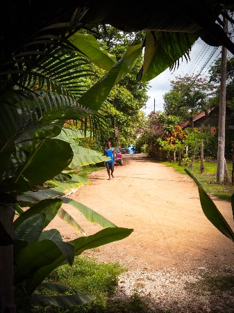 Las Mariposas: only steps from the beach