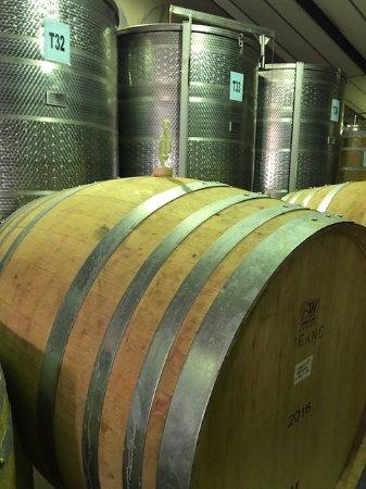 Klapmuts, Sudáfrica: barril de vinho