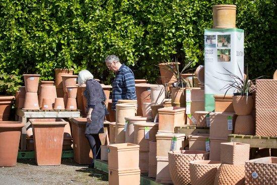 Breage, UK: Huge selection of pots at Trevena Cross
