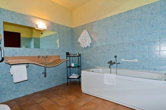 Costigliole d'Asti, Italy: Bagno camera