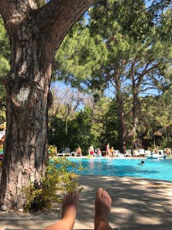 Beach Club Pinara: Şahane bir tatil geçirdik Huzur vardı.Her gece eğlence özellikle animasyon ekibi şahaneydi Demir