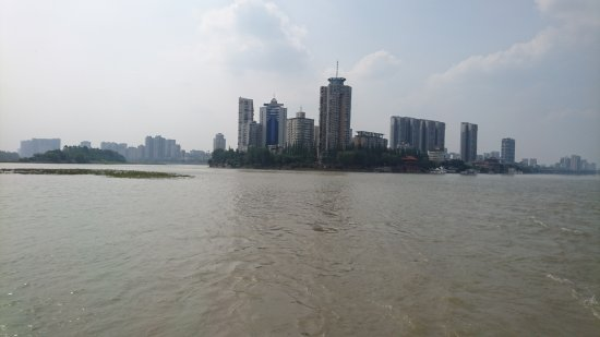 Leshan, จีน: DSC_8512_large.jpg