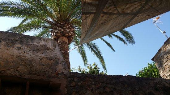Sineu, Spain: 20170624_093939_large.jpg