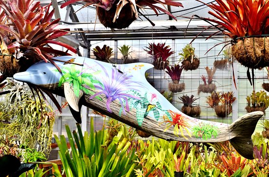 South Texas Botanical Gardens Nature Center Corpus Christi Top Tips Before You Go With