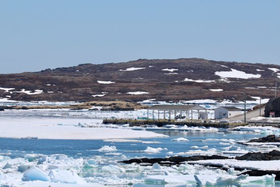 Harbour full of ice and boat up on dock day before reservation at Quirpon Island.