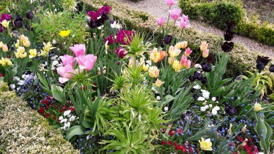 Jardin des plantes amiens ce qu 39 il faut savoir pour votre visite tripadvisor - Jardin des plantes amiens ...