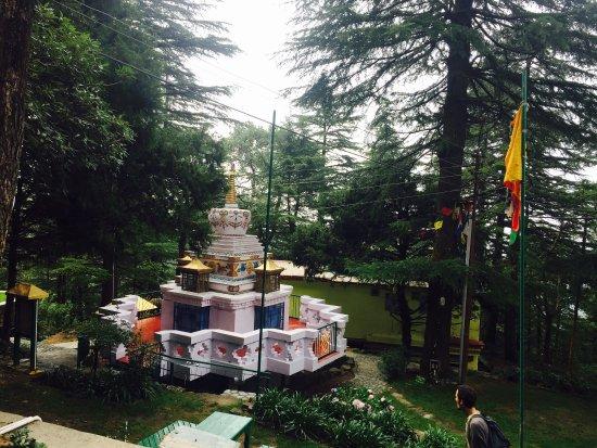 Tushita Meditation Centre : photo0.jpg
