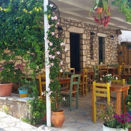 Tsovolas Grill House