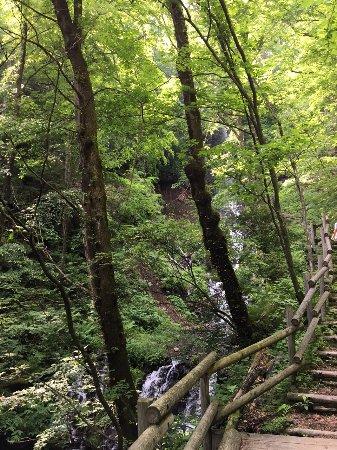 Sengataki Fall: 千ヶ滝