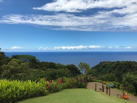 Hana Highway - Road to Hana : Garden of Eden