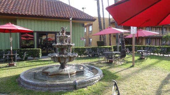 Norwalk, CA: jolie fontaine