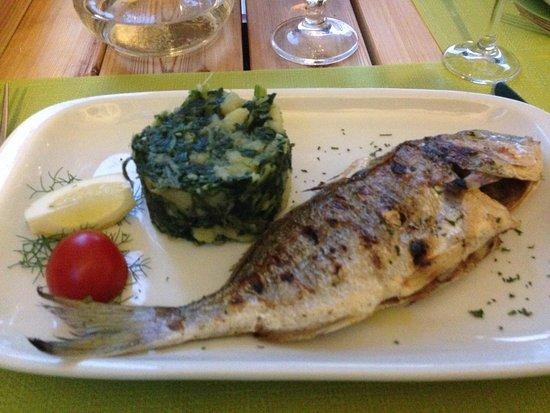 Skradin, Kroatië: fish was excellent!