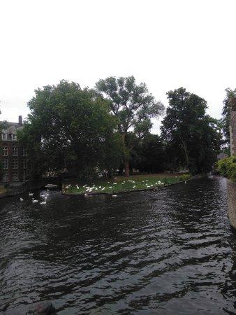 Verdi B&B: les petits canots qui sillonnent les canaux de Bruges