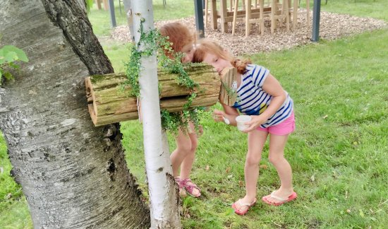 Lindsay, แคนาดา: Reading the messages that the fairies have left them on the doors! New houses are popping up wee