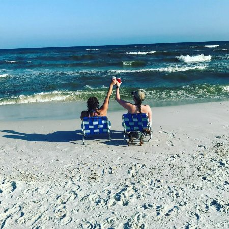 Gulf Breeze, Floryda: Cheers to sharing the beach with Athena (our dog)