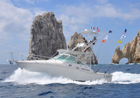 Arco Charters