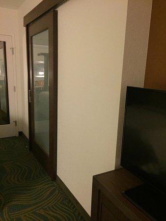 Winter Garden, FL: Porta ao banheiro e tv. Quarto espaçoso.