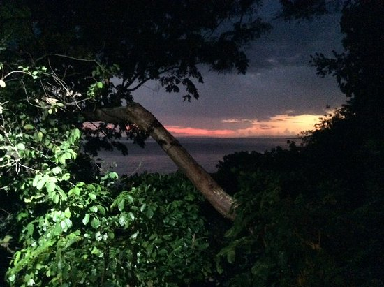 Bluefields, Giamaica: Treehouse sunset