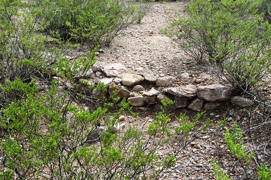 Sierra Vista, AZ: Wall footings