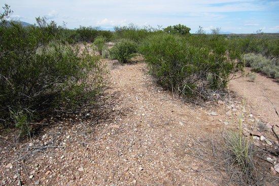 Sierra Vista, AZ: Footings and a shallow moat