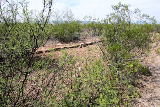 Sierra Vista, AZ: More footings of the defensive walls