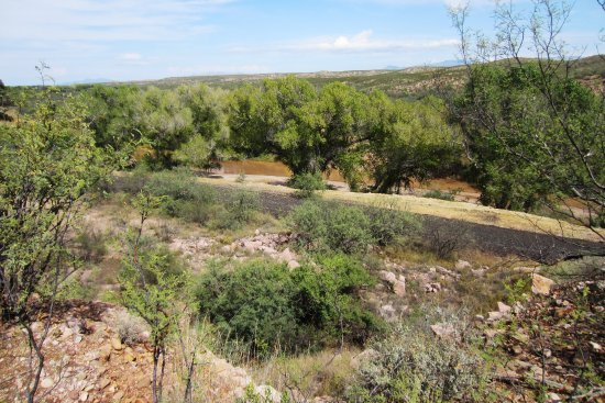 Sierra Vista, AZ: Road and river riparian habitat