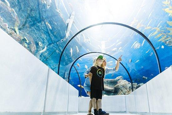 Quebec City, Canada: Aquarium du Québec