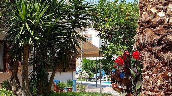 Daratsos, Yunani: FB_IMG_1498590439058_large.jpg