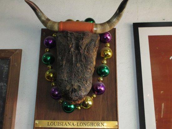 Round Rock, TX: This is said Louisiana Longhorn