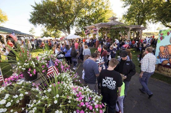 Alexandria, MN: A view of the crowds at Grape Stomp - our annual fall festival.