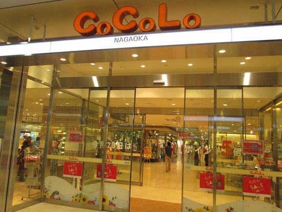 CoCoLo Nagaoka
