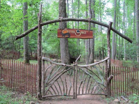 Bedford, فيرجينيا: Children's Natural Play area