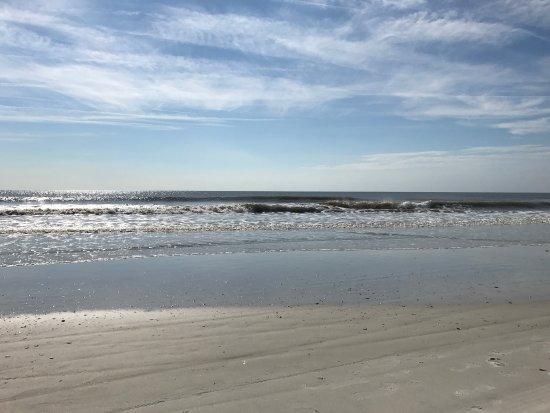 Atlantic Beach, FL: photo1.jpg